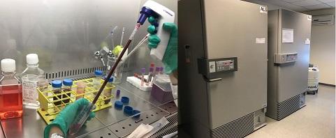 immagini biobanca. sala criogenica+lab 2